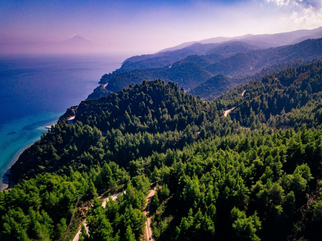 aerial-view-overhand-the-green-mountain-forest-and-FJPKWQA